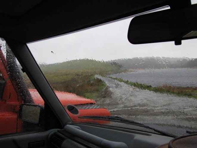 'Twas a soggy ol' day