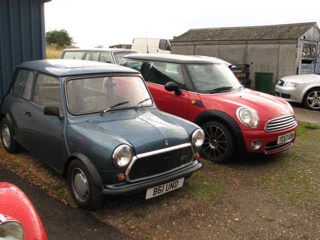 Are these both Minis? My wife says not.